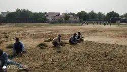 Cricket Ground Making Complete Development
