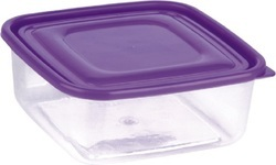 Square Food Delight Container 700 ml