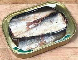 Canned Indian Sardine, Packaging Type: Tins , For Wholesale In Export Market
