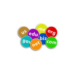 Domain Name Registration Services, Maintained Required: 1 Year