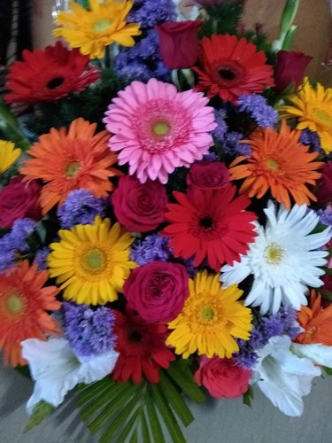 Fresh Flowers त ज फ ल फ र श फ ल वर In Vegetables Market Hosur Crystal Traders Id 20660397633