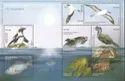 Marine Life Of Namibia High Face Value
