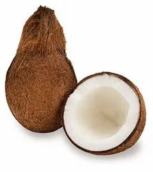 A Grade Solid Coconut Wholesaler In Ahmedabad, Packaging Size: 50 Kg, Coconut Size: Medium