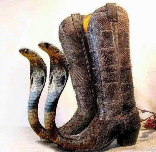 Stimulus Sandals & Sandals Retailer from Raniganj