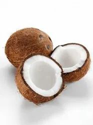 A Grade Foodrera coconuts Semi Husked Coconut, Packaging Size: 20 Kg, Coconut Size: Mix