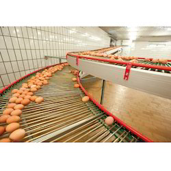 Egg Conveyor