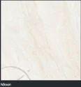 Polished Porcelain Vitrified Tiles (PGVT)