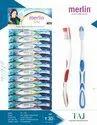 Multicolor Polypropylene Merlin - Taj Toothbrush