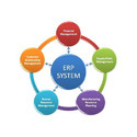Erp Accounting Software Services, Healthcare And Banking Finance