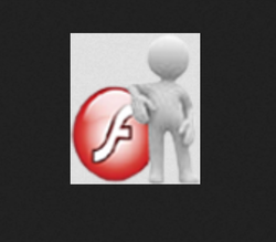Flash Development Service