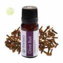 Clove Bud CO2 Oil