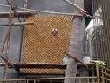 Stone 3D Mosaic Tiles