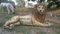 Natural Fiber Glass Fiberglass Lion Sculpture, For Exterior Decor, Size/dimension: H 36 X L 72 X D 24