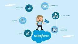 Offline Saas Based Sales Force CRM