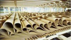 Cardboard Printing Service