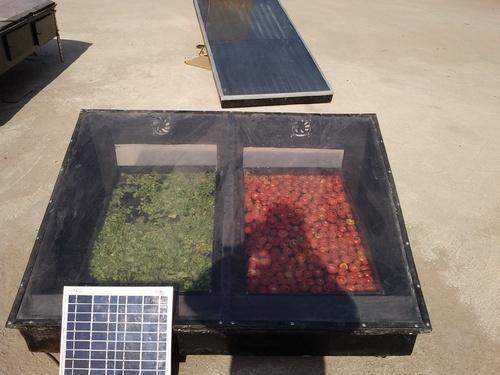 Solar Dryer - Solar Vegetable Dryer Manufacturer from Ahmedabad