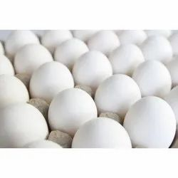 White Poultry Chicken Table Eggs, For Household, Packaging Type: Tray