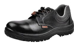 SP Smarty Safety Shoes