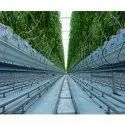 Environmental Control Ripening Chamber Turnkey Projects