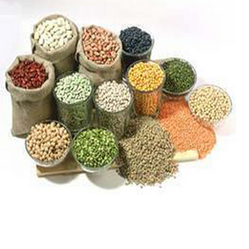 Pulses Service