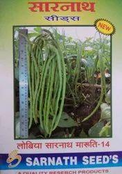 Sarnath Cowpea Seed