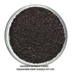 Seaweed Extract Flake
