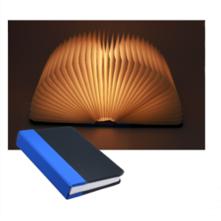 Mini Book Lamp