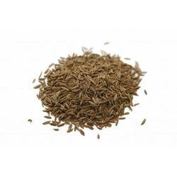Caraway Seeds in Delhi - Get Latest Prices and Mandi Rate ...