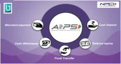 AEPS (Aadhaar Enabled Payment System) API/ White Label/ Software