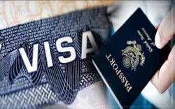 Visa Guidance Service