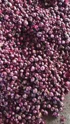 Dry A Grade Rose Onion, 10 Kg, Onion Size Available: Small