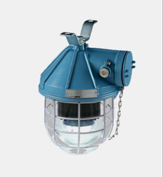 LW 51200 Well Glass Fixture