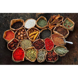 Spices Powder for Food