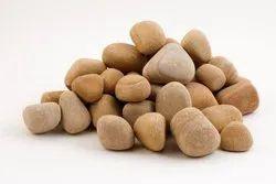 Teak Sandstone Pebble