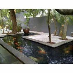 Fish aquarium in thiruvananthapuram latest price mandi for Koi fish in pool