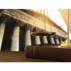 Constitutional Law Attorneys, Local