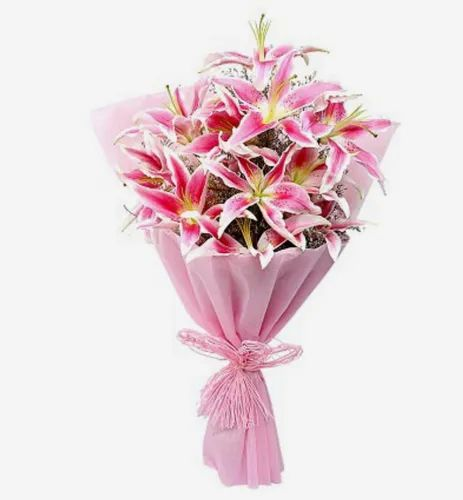 Pink Luxurious-Lilies Flower