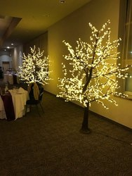 Warm White Color LED Tree Size 8 feet to16