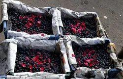 Fresh Black Grape