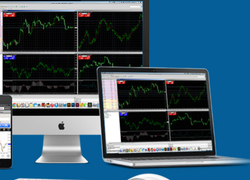 Service Provider of Auto Robot Trading for MCX and NSE Markets