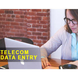 Telecom Data Entry Project