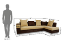 Adorn India Adillac Corner Sofa (Brown & Beige)