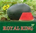Royal King F-1 Hybrid Watermelon Seeds