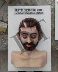 Forensic Multiple Homicidal Split