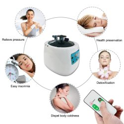 Portable Steam Generator (1.5 liter) With Adjustable Temperature Option And Remote control