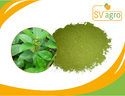 Griffonia Simplicifolia Extract