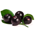 Acai Berry Extract 10%