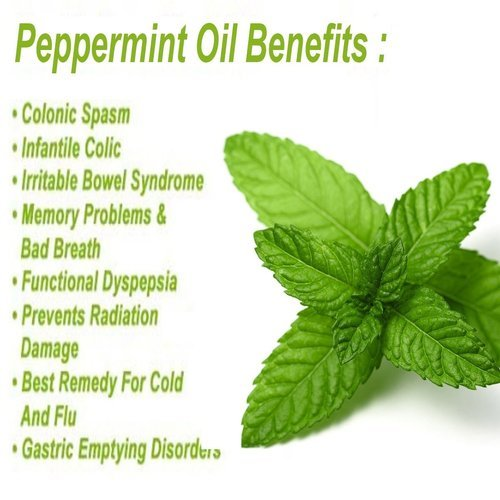 Guide Peppermint Oil