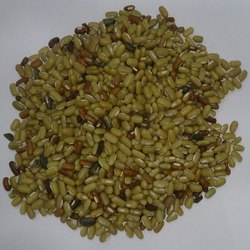 Balaji Yellowish And Greenish Bamboo Beans, High in Protein, Packaging Size: 50-100 Kg