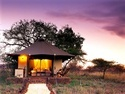 Serengeti Safari Tent